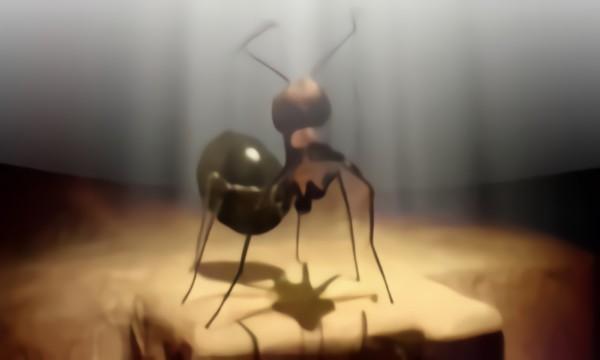 Move it муравьи